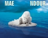 Edito  : Un ours dans le paysage musical africain